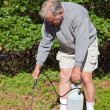 Stock Photo: Active Senior Spraying Weeds