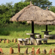 Shaded Stone Benches at Serengeti National Park — Stock Photo