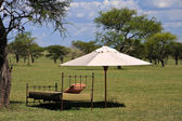 Resting Place in the African Savannah — Stock Photo