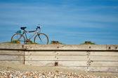 Bicycle journey — Stock Photo