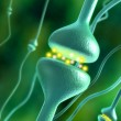 Synapses - Stock Photo