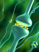 Synapses — Stock Photo