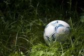 Ball — Stok fotoğraf
