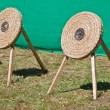 Archery Competition — Stock Photo #3521903