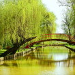 Stock Photo: Bridge over water in park