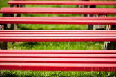 Red benches in a park — Stock Photo