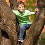 pojken klättrar i träd — Stockfoto #2894552