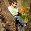 Boy climbing in trees — Stock Photo #2894557