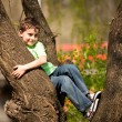 Boy climbing in trees — Stock Photo #2894568