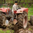 Old farmer plowing — Stock Photo #2895838