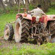 Old farmer plowing — Stock Photo #2895857