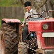 Old farmer plowing — Stock Photo #2895872
