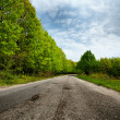 Empty road between trees — Foto Stock
