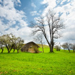 House in the mountain meadow — Stock Photo