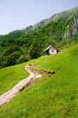 Old house in mountains — Stock Photo
