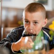Boy drinking soda — Stock Photo