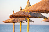 Thatched umbrellas on the beach — Foto Stock