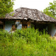 Abandoned house - Foto Stock