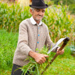 Old rural musing scythe — Stock Photo #3808839