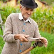 Old rural man using scythe — Stock Photo