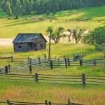 Little old wooden shack — Stock Photo
