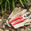 Work gloves and hand pruner — Stock Photo #3103685