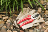 Work gloves and hand pruner — Stock Photo