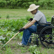 Stock Photo: Handicapped min his garden