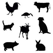 Farm animal silhouettes — ストック写真