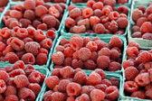 Raspberry background — Stock Photo
