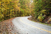 Camino sinuoso — Foto de Stock