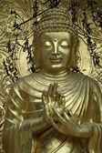 Bénédiction de bouddha — Photo