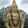 Lord Shiva — Stock Photo #3516851