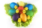 Huevos de pascua en hojas — Foto de Stock
