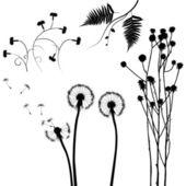 集合中,为设计师的植物矢量 — 图库矢量图片