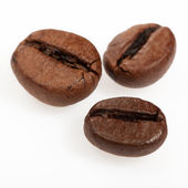 Isolated macro shot of coffee beans — Stock Photo