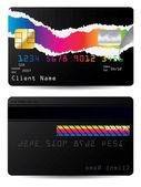 Torn credit card — Stock Vector