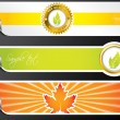 Royalty-Free Stock Vector Image: Eco banners