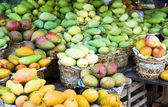 Mango-hintergrund — Stockfoto