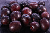 Group of plums — Stock Photo