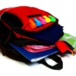 school backpack — Stock Photo