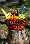Basket with fruit on nature — Stock Photo