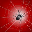 Stock Vector: Spider on wed