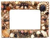 Frame for photo from marine cockleshells — Stock Photo