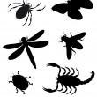 Stock Vector: Beetles and insects silhouette