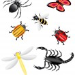beetles and insects colors — Stock Vector