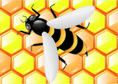 Bee op honingraten — Stockvector