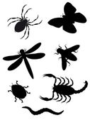 Beetles and insects silhouette — Stock Vector
