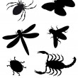 Stock Photo: Beetles and insects silhouette