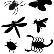 Beetles and insects silhouette — Stock Photo